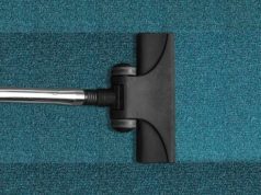 Home Cleaning - Why Hire a Professional Carpet Cleaner