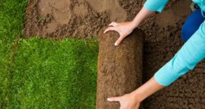 How to Find the Right Landscaping Service