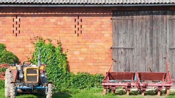 10 Farming Business Ideas Which You Can Start Now