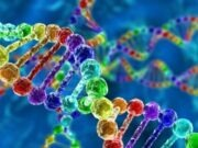 How Accurate are DNA Tests