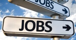 Top 10 Highest Paying Jobs in Dubai for 2022